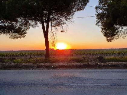 Coucher de Soleil devant la Quinta Cavaluz